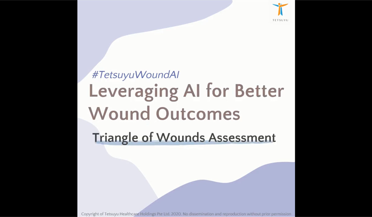 Triangle of Wounds Assessment